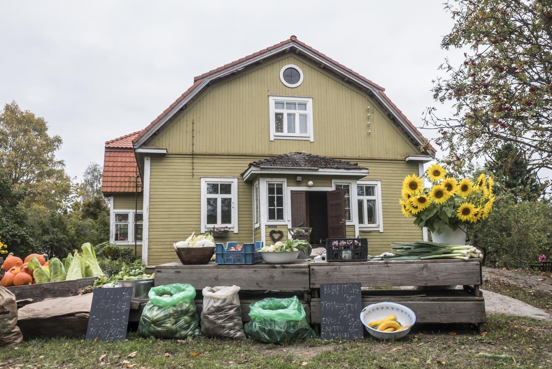 Ruokaretki.fi-sivustolla juhlistetaan lähi- ja luomuruokaa sekä suomalaista ruokakulttuuria perinteineen ja ilmiöineen. Kuva Kurjen tilalta Vesilahdesta.